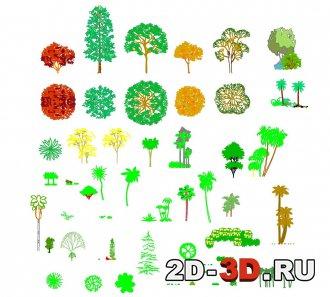 Деревья блоки dwg формата для AutoCAD